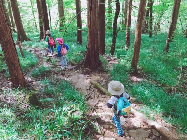 ハイキングをする子ども