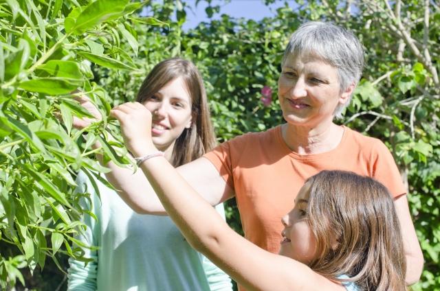 興味を持ち、感動した経験が子どもの成長を促す