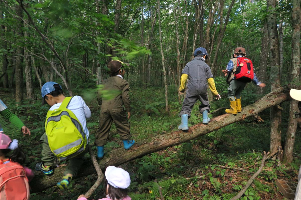 森の中には発見がいっぱいで、子どもたちは様々な遊びを作り出していきます