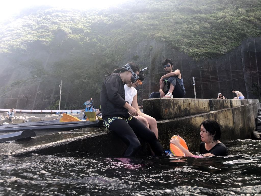 NPO法人CROP-MINORI:2018年御蔵島ドルフィンスイムツアー
