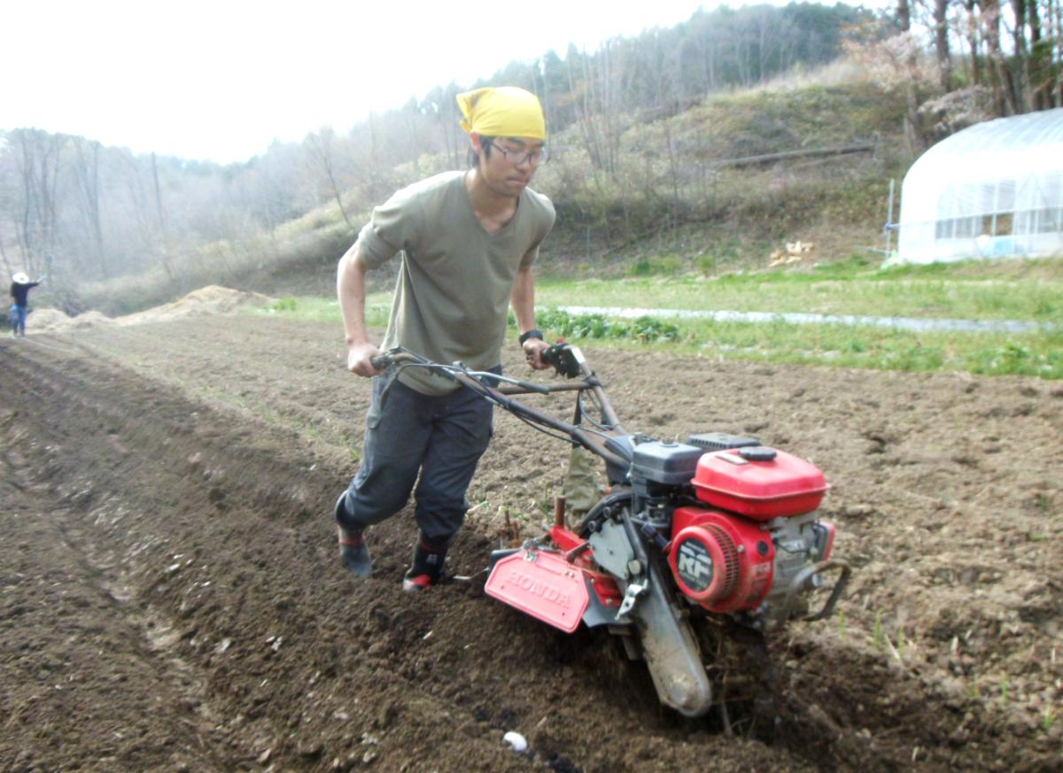 東京育ちで全く農業経験のなかった伊勢野さんは、ゼロから作業を学び、実践しています