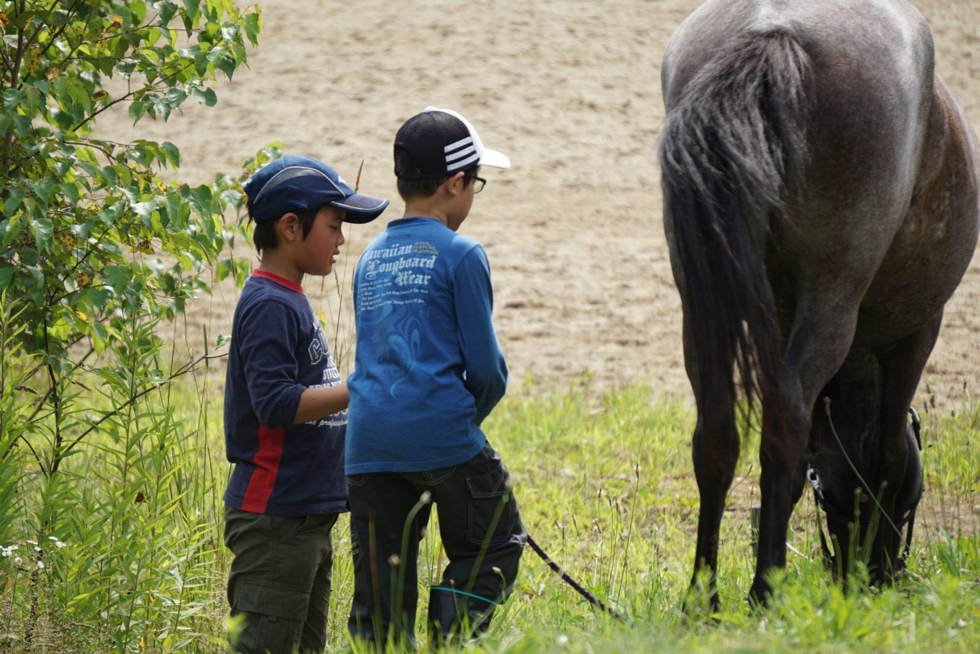 小中学生と対象とした「牧場暮らしキャンプ」を北海道で実施
