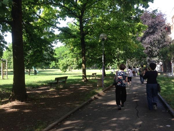 ある園まで向かう道。園の隣にある広大な公園も園児たちの憩いとあそびの場となる。
