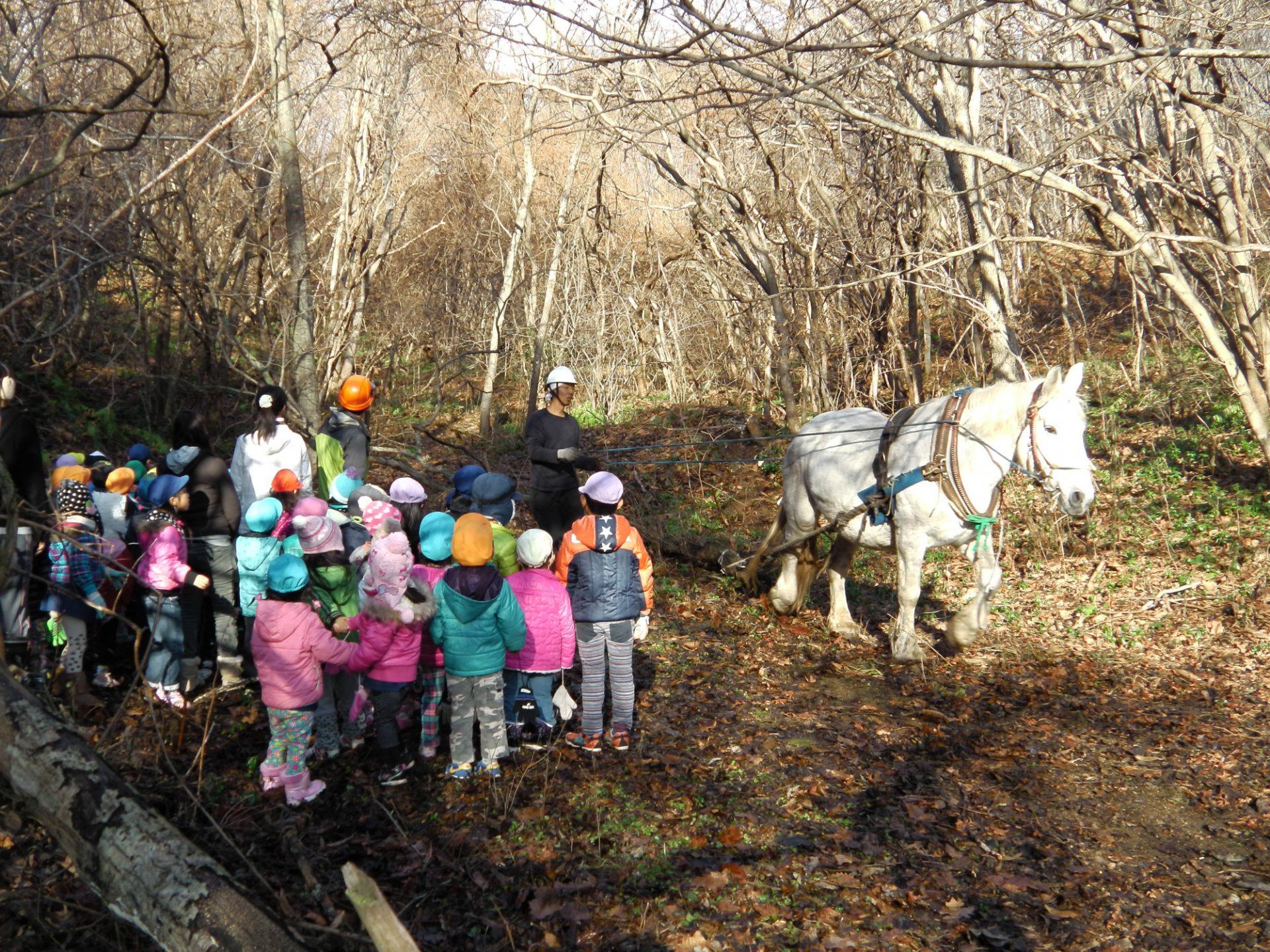 北海道での子どもの自然体験活動の様子